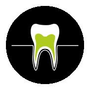 Dantims ir dantenoms | Ikona | Bachus